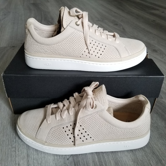 UGG Shoes   Ugg Cali Sneakers Low Perf